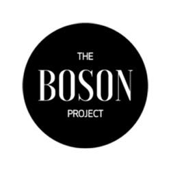 logo_boson project